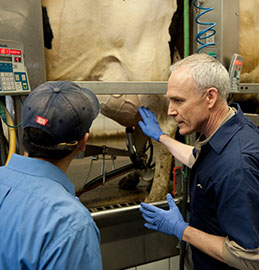 Is your management style reactive or proactive? The difference means a lot to your dairy.