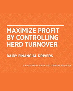 Maximize profit by controlling herd turnover