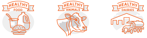 Healthy Food, Animals, Dairy